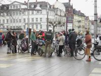 Critical Mass in Heidelberg 1