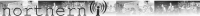 NorthernBanner2.png
