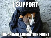 i support the animal liberation front!